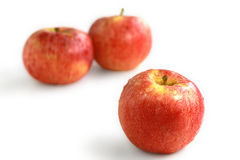 Red apples. The red ripe apples covered with drops of water Stock Image