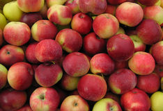 Red apples. Red Delicious apples at a farmer's market royalty free stock photos