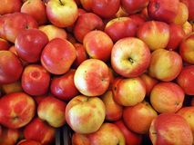 The red apples. In the Vilnius market Stock Photography