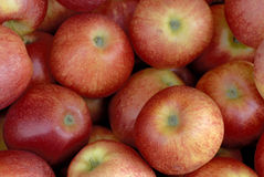 Red Apples. All Over the Picture Royalty Free Stock Images