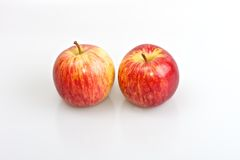 Red apples. Two red fresh apples isolated on white studio background Royalty Free Stock Photos