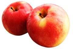 Red apples. Royalty Free Stock Image