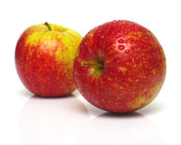 Red apples 2 Stock Image