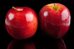 Red apples Royalty Free Stock Photography