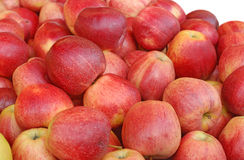 Red apples. Group of delicious red apples Stock Image