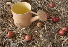 Red apples. And watering in the manger Stock Photos