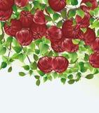 Red apples vector illustration