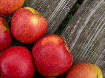 Red apples Royalty Free Stock Images