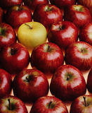 Red apples. But one yellow Stock Image