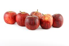 Red apples isolated Royalty Free Stock Images