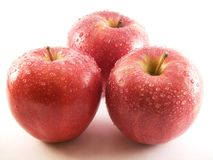 Red apples. Some red apples in a white background stock image