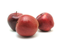 Red Apples. Three red apple on white background royalty free stock photography