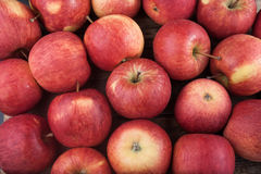 Free Red Apples Royalty Free Stock Image - 89058626