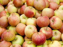 Red apples. Fresh juicy red apples background royalty free stock photography