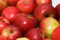 Red apples arranged. On rows at the market Royalty Free Stock Photography