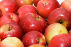 Red apples arranged on rows at the market royalty free stock images