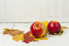 Red apples and autumn leaves Stock Photography
