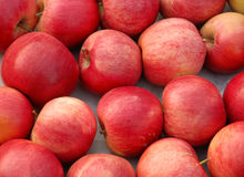 Red apples background Stock Photography