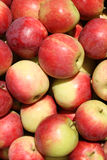 Red apples background Stock Photos