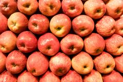 Red apples background. Ripe fruits neatly laid out on the counter in the store royalty free stock images