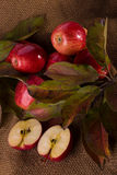 Red apples on bagging Royalty Free Stock Photography