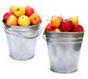 Red Apples in basket Stock Images