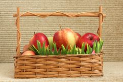 Red apples in a basket Royalty Free Stock Photography