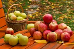 Red Apples with Basket stock photos