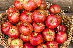 Red apples in a basket. On a wooden background Royalty Free Stock Image