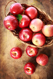 Red apples in a basket Stock Photography