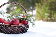 Red apples in basket in snow, outside Stock Images