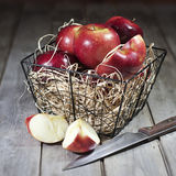 Red apples in basket. Red apples in wire basket on hay Stock Photography