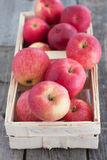 Red apples in a basket on the wooden table Stock Images