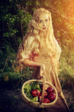 Red apples. Beautiful young woman with magnificent blonde hair standing outdoor with a basket with apples. Countryside Royalty Free Stock Images
