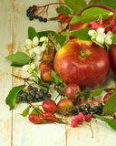 Red apples and berries on a wooden table closeup Stock Photo
