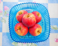 Red apples in a blue bowl Royalty Free Stock Photos