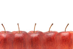 Red apples border Royalty Free Stock Image