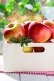 Red apples in the box Stock Photos