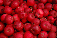 Red apples in boxes stock photo