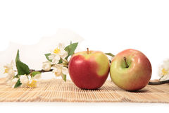 Red apples and branch of apple-trees. Red  apples and branch of apple-trees Royalty Free Stock Images
