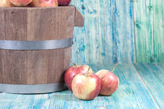 Red apples in  bucket Stock Photography
