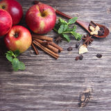 Red apples, cinnamon sticks and spices Stock Images