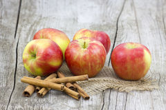 Red apples and cinnamon sticks Stock Images