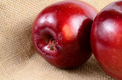 Red apples. Close up red apples on sackcloth stock photos