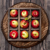 Red apples . Collage. Stock Photography