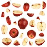 Red apples collection. Red apples isolated on white Stock Images