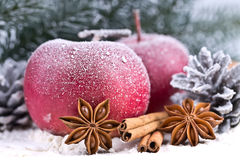 Red Apples and cones in the snow Stock Photos