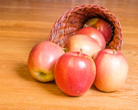 Red apples in a cornucopia Stock Photos