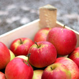 Red apples in the crate royalty free stock photos