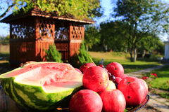 Red apples and cut water-melon near the arbor Royalty Free Stock Images